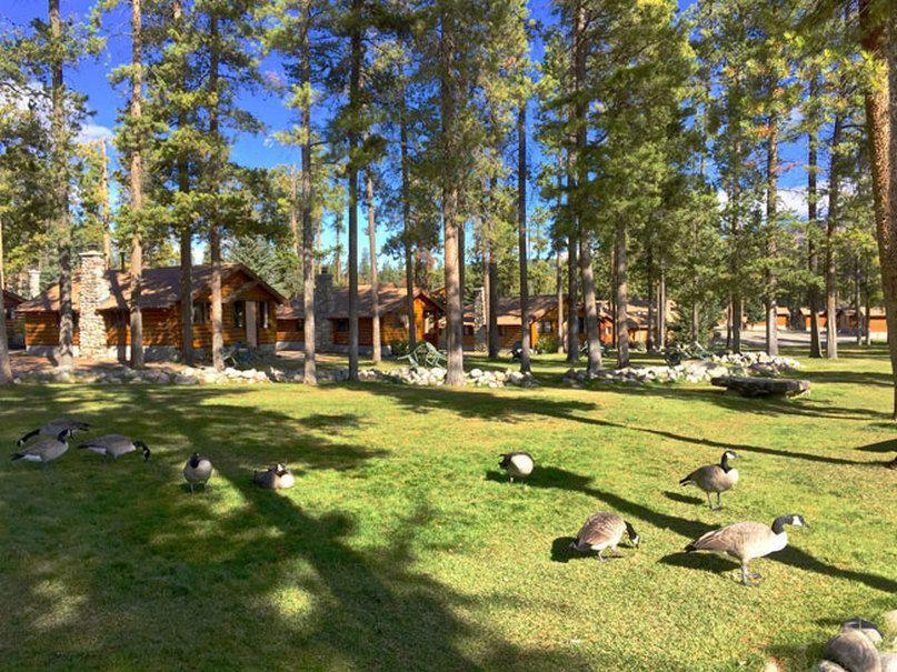 Maryam Rahimi Kanada Road Trip Alberta, Jasper National Park, Národný park Banff a Dinosaur Provincial Park