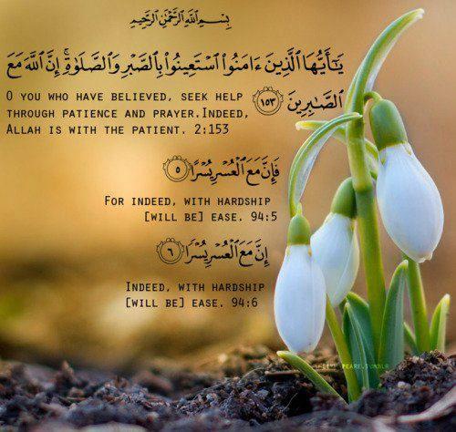 Http Islampeace1 Files Wordpress Com 2011 11 320576 246942538697632 100001456632363 714678 1482210768 N Jpg Quran Islam Quran Islam