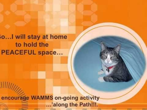 WHISPER's WAMMS Message:  Do STEP FORward to Assist WAMMSNow!!!  Your participation & support is welcomed & appreciated, My Friends.