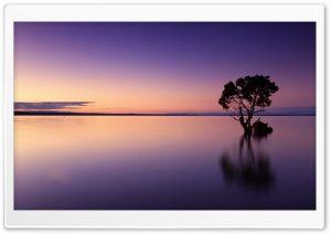 Calm Ocean Dusk HD Wide Wallpaper For Widescreen