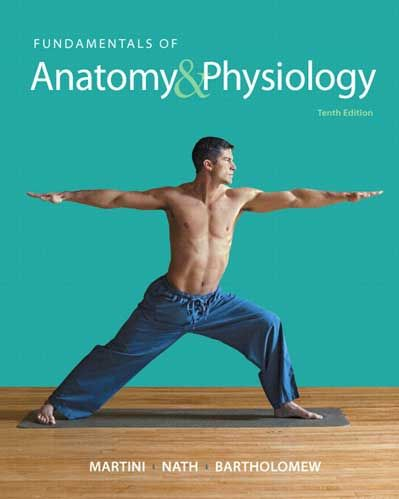 solution manual fundamentals of anatomy  physiology 10th