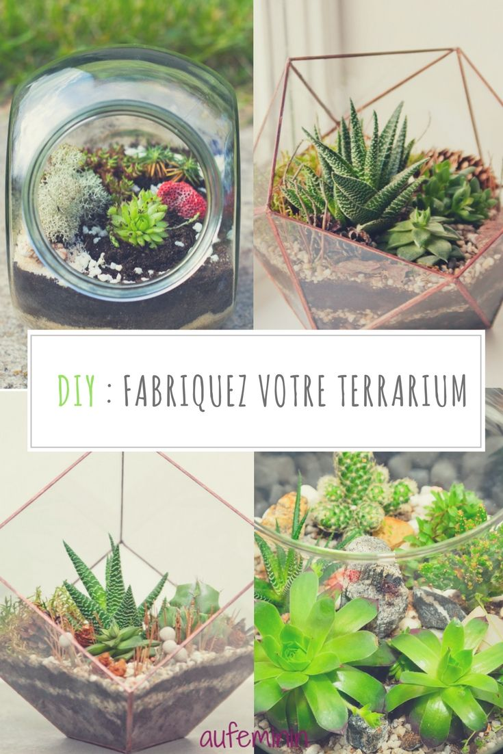 terrarium comment faire un terrarium jardins et fleurs pinterest terrarium plantes. Black Bedroom Furniture Sets. Home Design Ideas