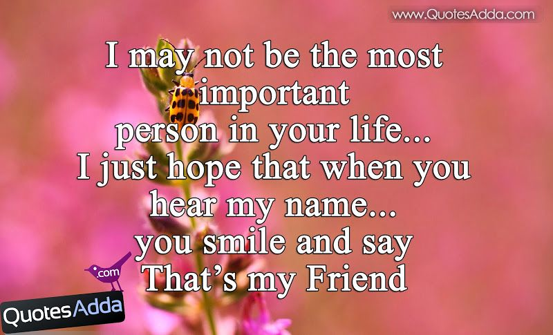 best-friendship-quotations-in-english.jpg (800×485) | zzz ...