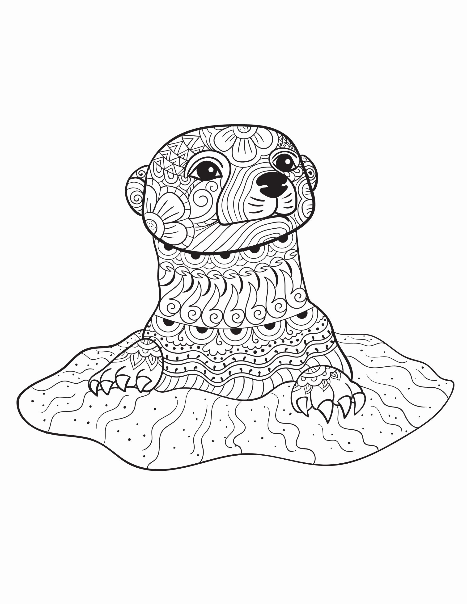 Realistic Animals Coloring Pages In 2020 Bird Coloring Pages