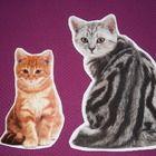 Kissa sisustustarrat