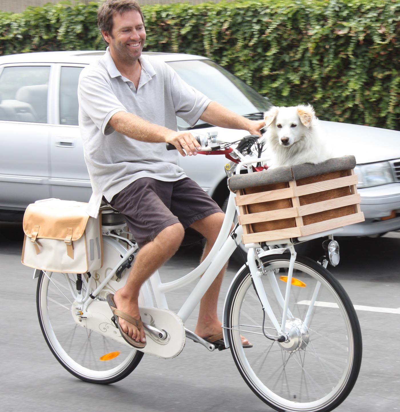 велоспрингер для собак купить в красноярске