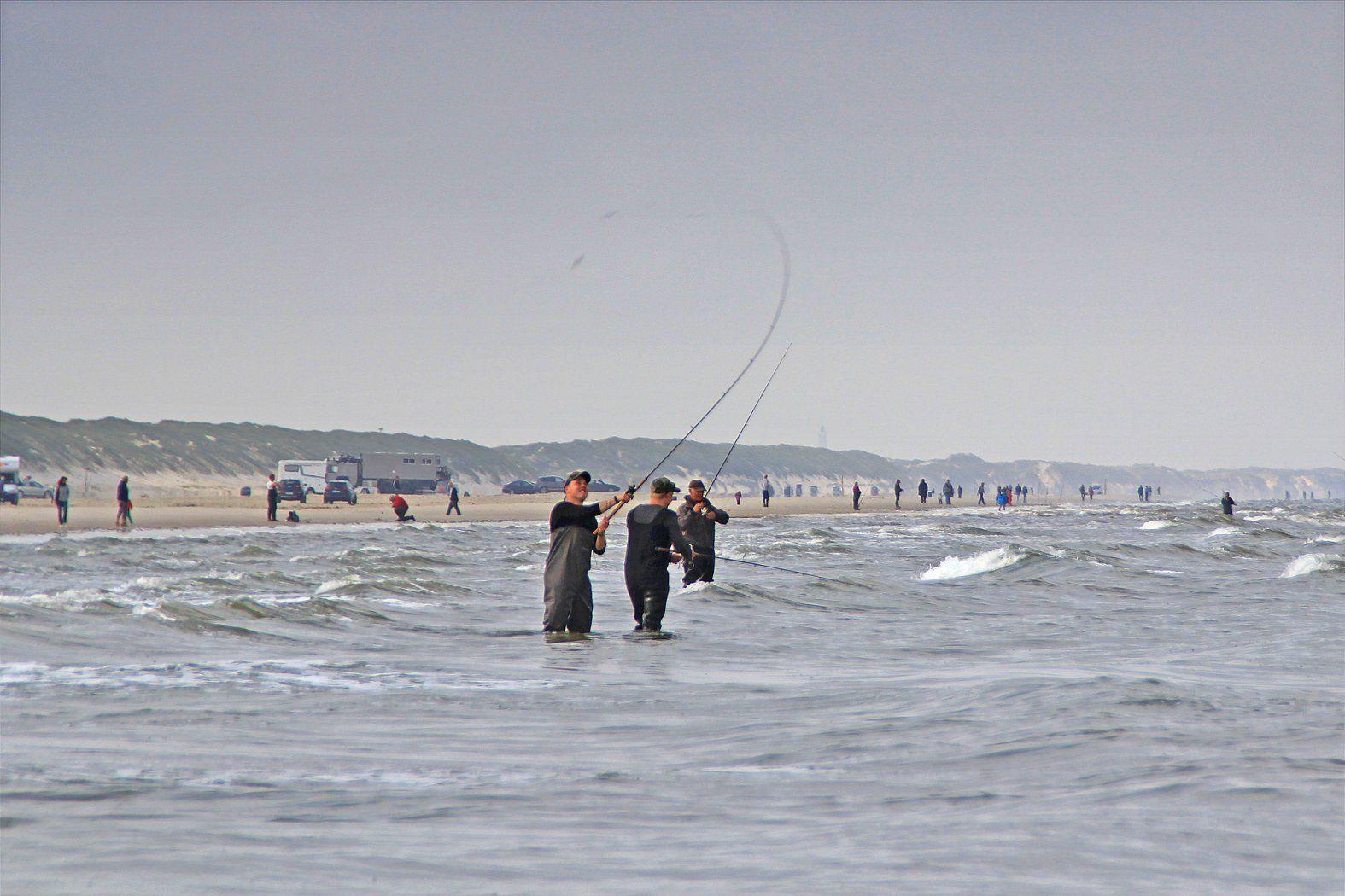 Praxistipps der Plattfisch Queen | Angeln dänemark