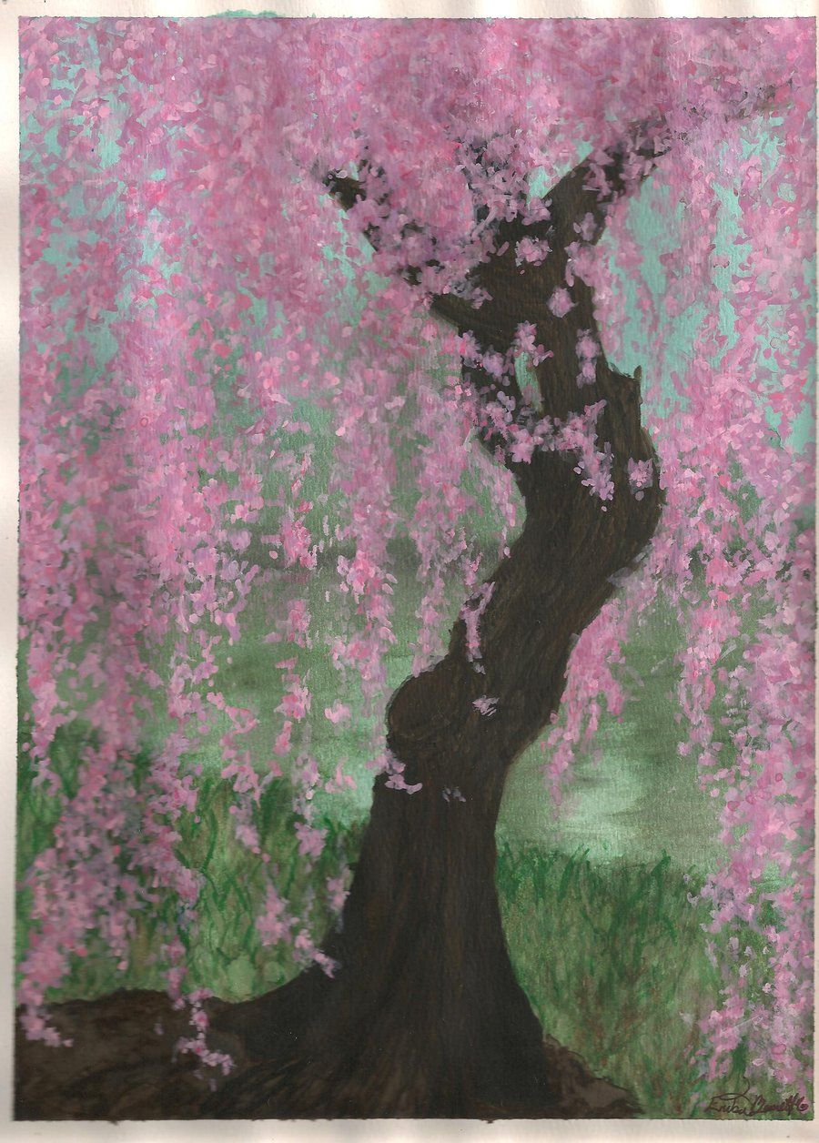 Weeping Cherry Blossom Tree By Kantuya On Deviantart Cherry Blossom Painting Tree Illustration Blossom Trees