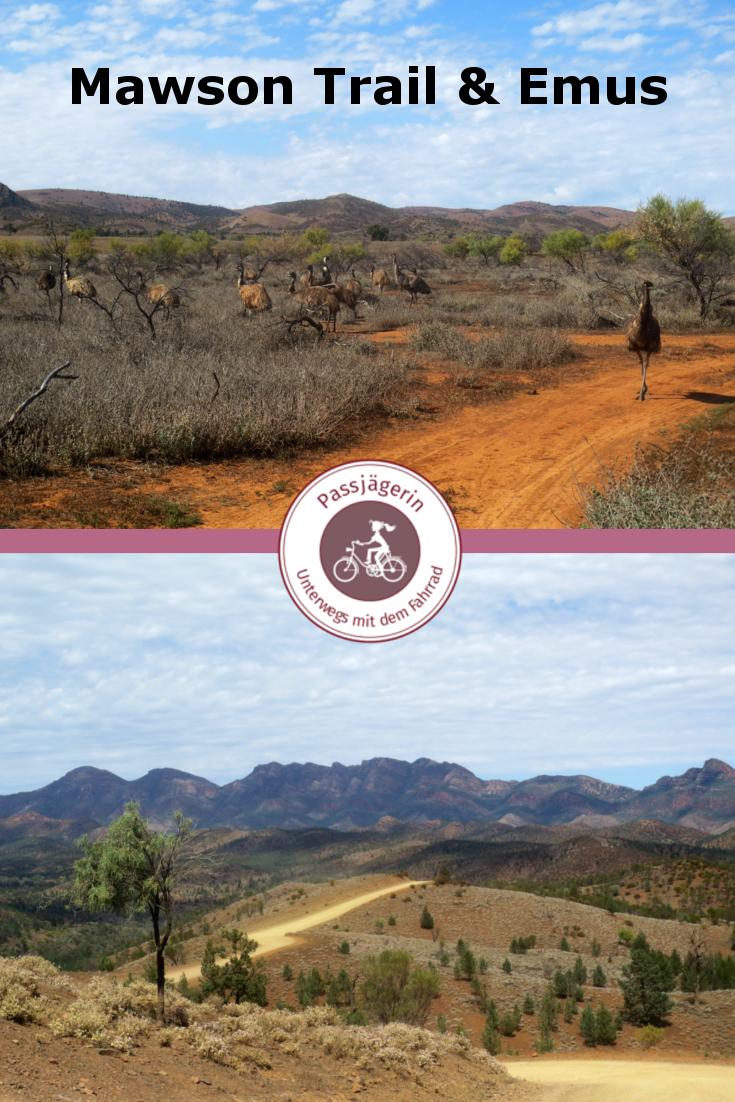 Unterwegs Auf Einem Der Schonsten Fahrrad Trails Australiens Der Mawson Trail Startet Im Outback In Einem Kleinen Dorf Namens Erkunden Nationalpark Australien