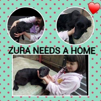 Zura The Romania Beauty Romania West Yorkshire Yorkshire