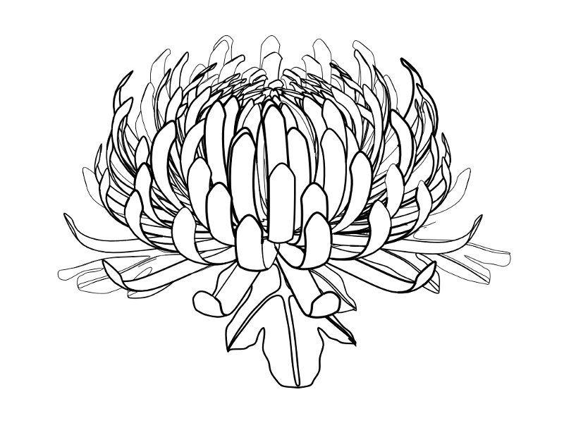 found on google - tattoo inspirationsss | Tattoo Inspiration | Pinterest
