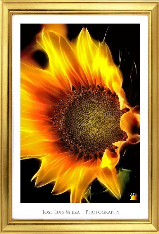 Reinante el Pintor de Fuego - photography (Fuego en el cuerp) - reinante.megashot.net