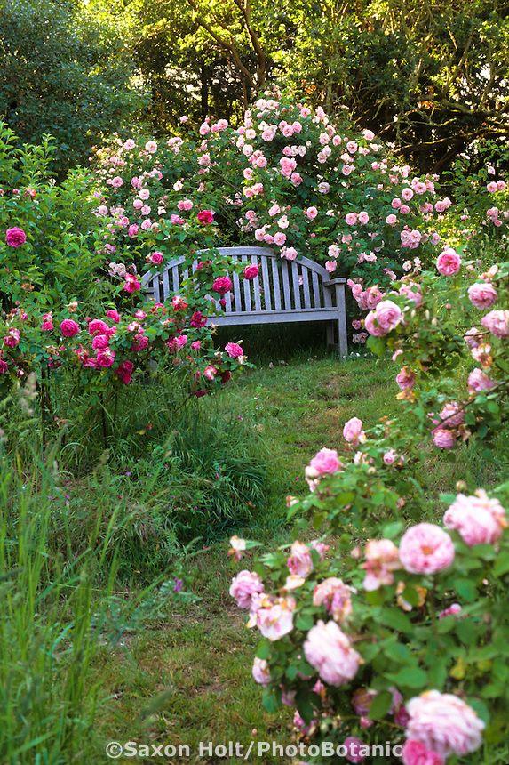 22 blue garden bench ideas