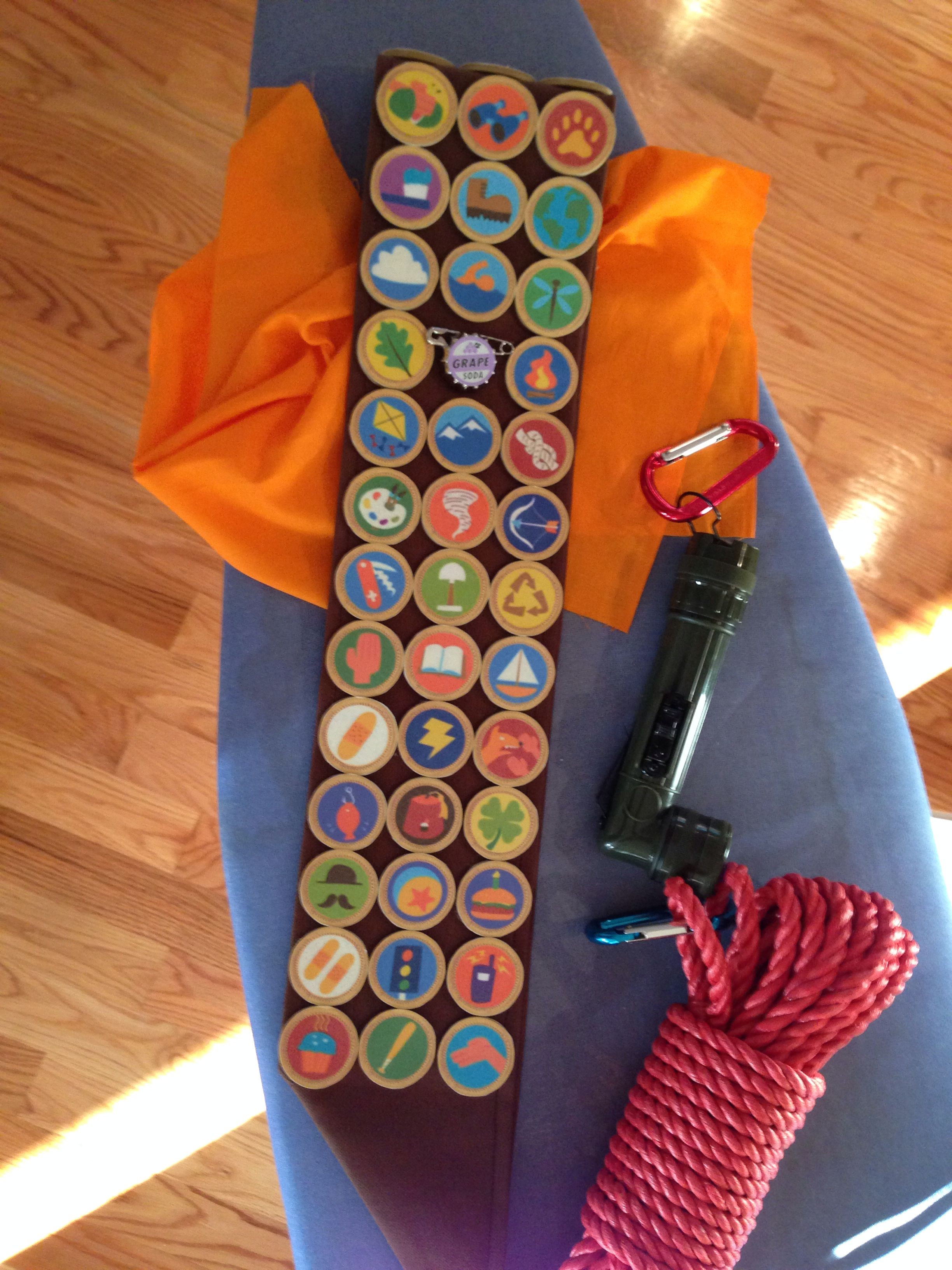 PIXAR's UP - Russell Costume - Badges