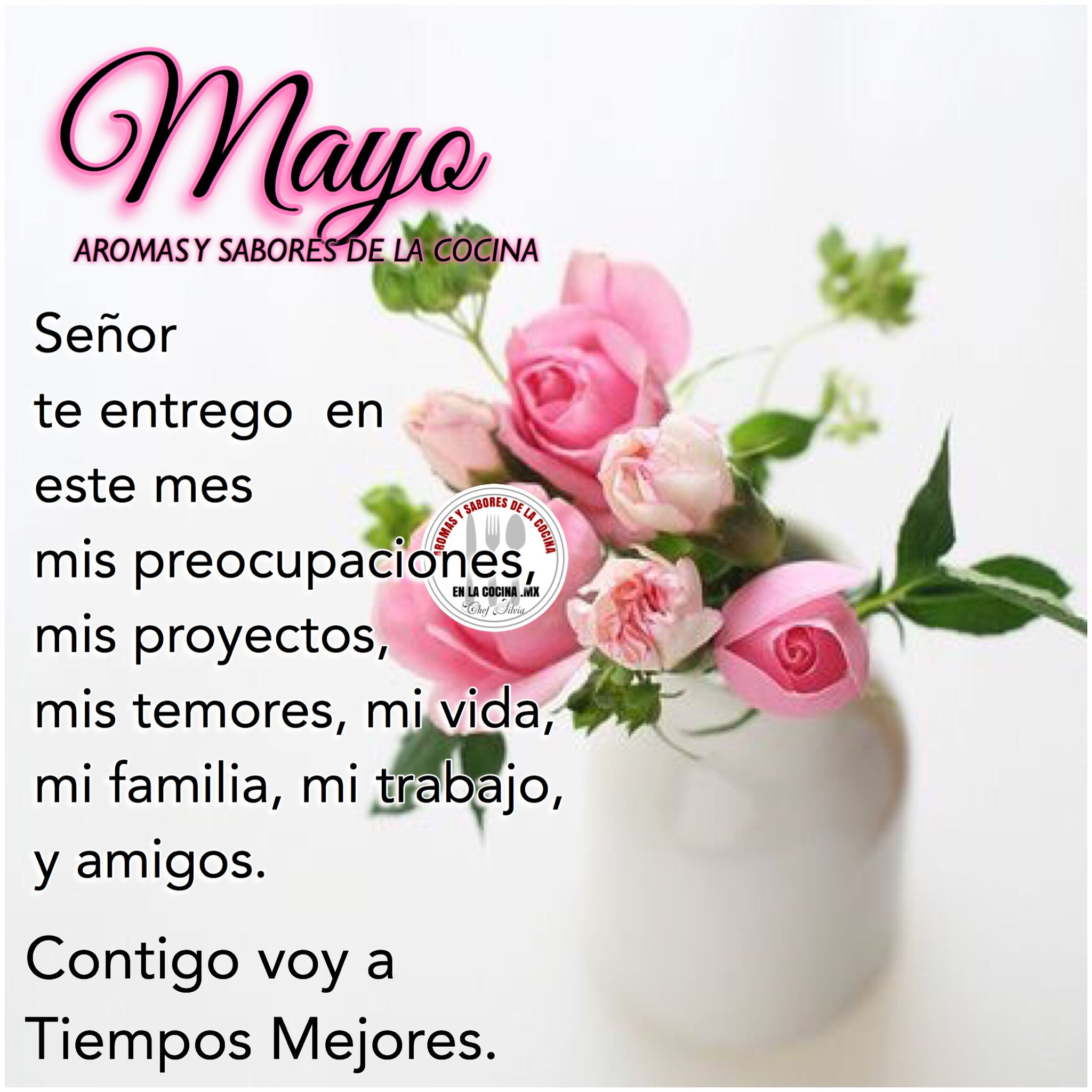 Bienvenido Mayo Imagenes Para Estados Frases De Rosas Deseos De Buenos Dias