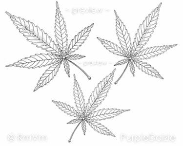 Printable Adult Color Page Marijuana Leaf Mary Jane Three Cannabis Leaves Medicinal Herb Controversial Plant