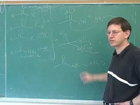 Introduction to amino acids and peptides (1) - http://www.sportsnutritionshack.com/amino-acids/introduction-to-amino-acids-and-peptides-1/