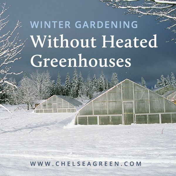 Winter Gardening Without Heated Greenhouses