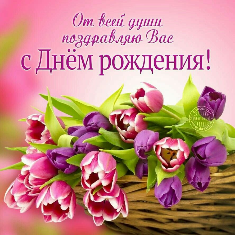 Пин от пользователя Гульвира Абдулаева на доске День ...