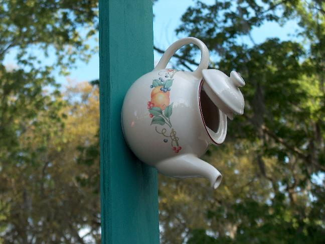 teapot birdhouse/this is really cute. Flea markets here I come ... on coffee bird houses, flower bird houses, basket bird houses, tree bird houses, christmas bird houses, box bird houses, easy to make bird houses, silver bird houses, pan bird houses, book bird houses, clock bird houses, really easy bird houses, spoon bird houses, vintage bird houses, porcelain bird houses, cream bird houses, teacup bird houses, watering can bird houses, tea cup bird feeder poem, kettle bird houses,