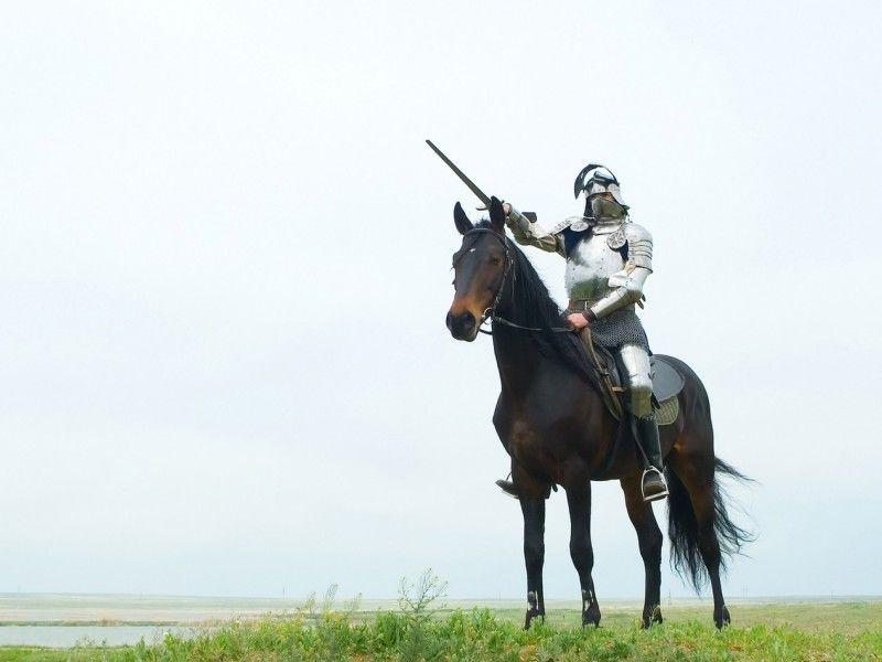 Les Fonds D Ecran Un Cheval Monte Par Un Cavalier En Armure Cheval Photos De Chevaux Images