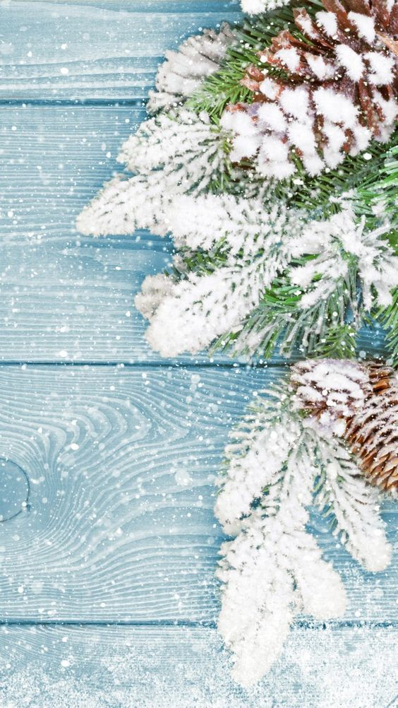 Fox and Spice: 48 Christmas & Winter Phone Wallpapers #winterbackground