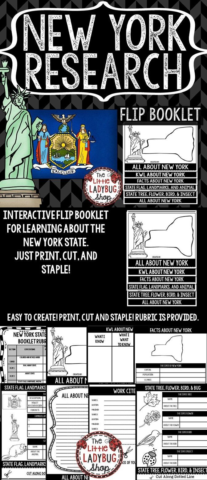 small resolution of New York Research   4th grade social studies