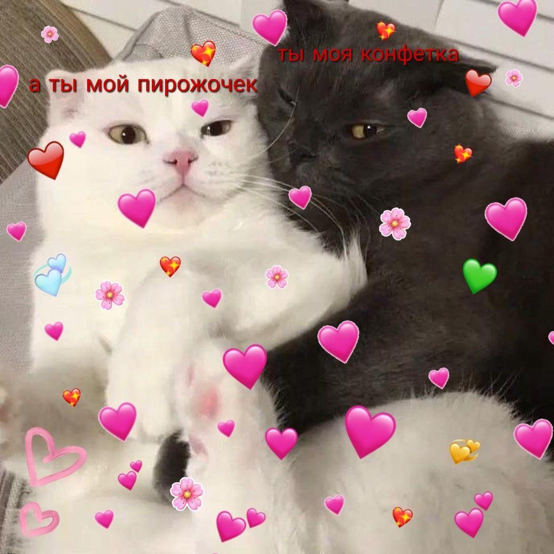 Милые картинки с надписями любовь