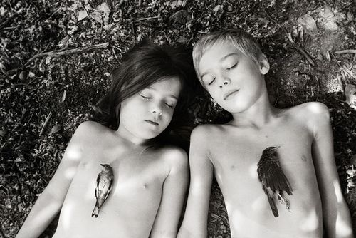 Sleeping Beasts IV by Dara Scully on Flickr.