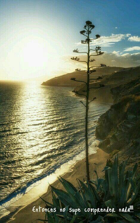 Playa Granada (op een uurtje rijden van de stad) is een onbekend stukje strand