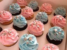 Twinkle Twinkle Little Star Cupcakes Pink Blue Cupcakes And Maybe