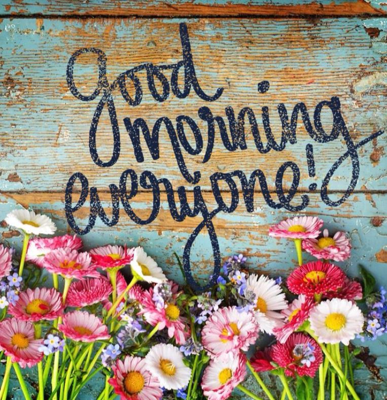 Good Morning Everyone.u0027Good Morning Is Not Just A Word, Its An Action And A  Belief To Live The Entire Day Well. Morning Is The Time When You Set The  Tone ...