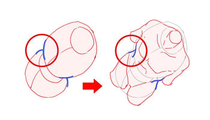 肋骨と骨盤に分けて考える 身体を描きやすくするアタリの取り方 In
