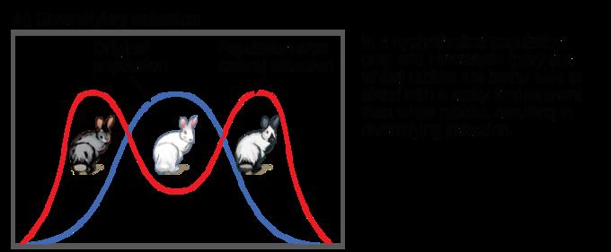 Codominance vs incomplete dominance yahoo dating