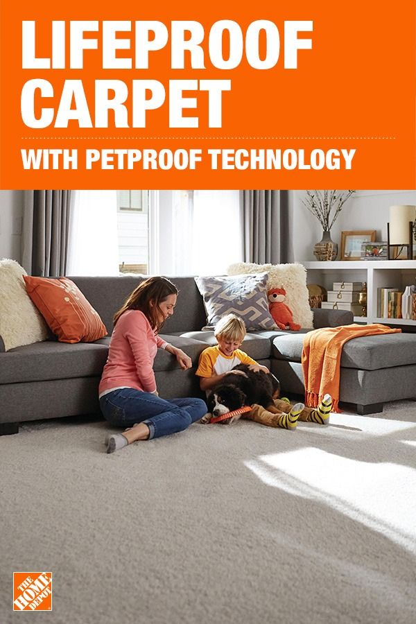 Choose From A Variety Of Colors And Styles Of Lifeproof With Petproof Technology Carpet The Official Sponso Carpet Installation How To Clean Carpet Diy Carpet