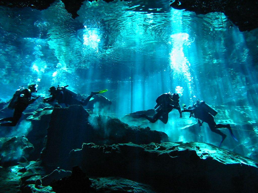 cenote diving - Google 検索