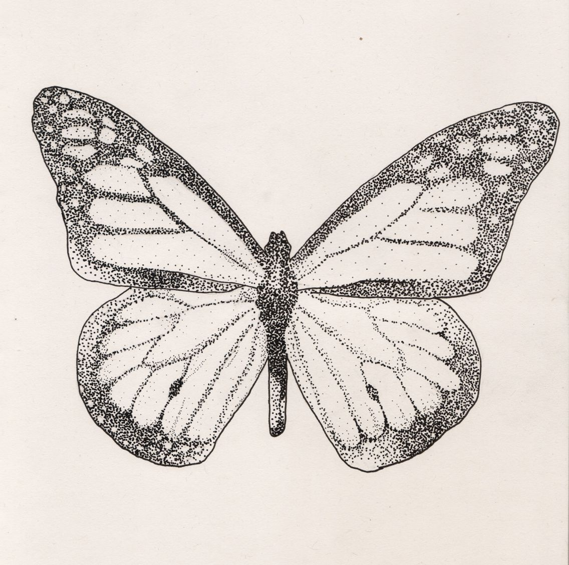 Simple Butterfly Drawing: Pointillism Illustration Day One Of Pointillism, A