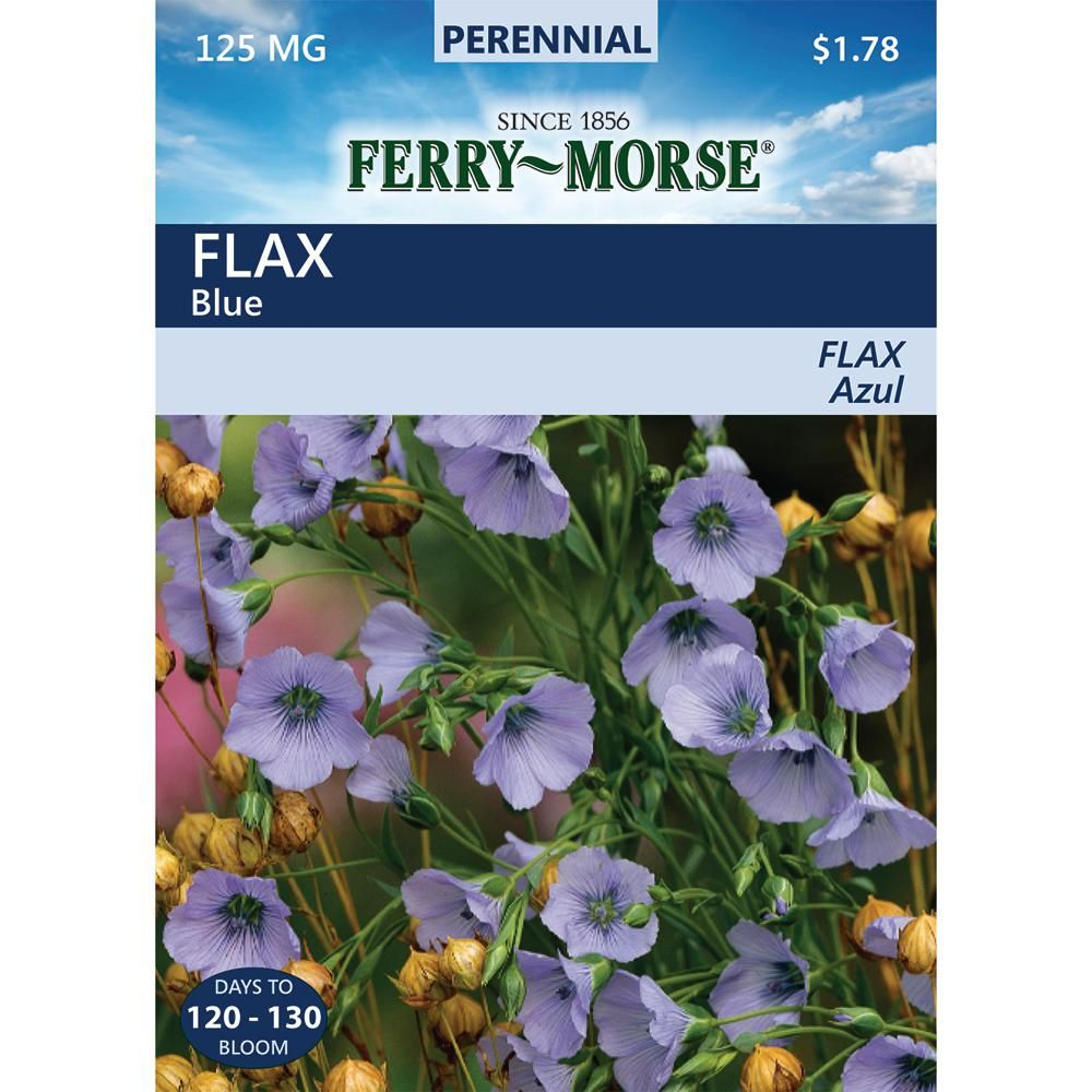Ferry Morse Flax Blue Seed Gardens