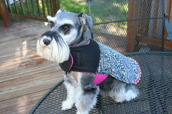 The Bohemian Bow Wow The Buffy dog warmer dog coat by cimoore, $27.00