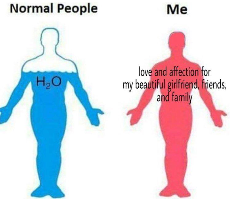 Respectful Memes On Twitter Me As A Girlfriend Beautiful Girlfriend Wholesome Memes