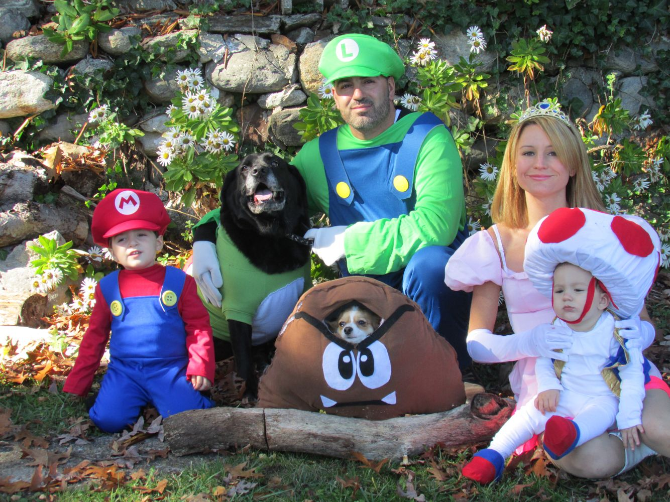Halloween costumes Family super Mario brothers Dog costumes ...