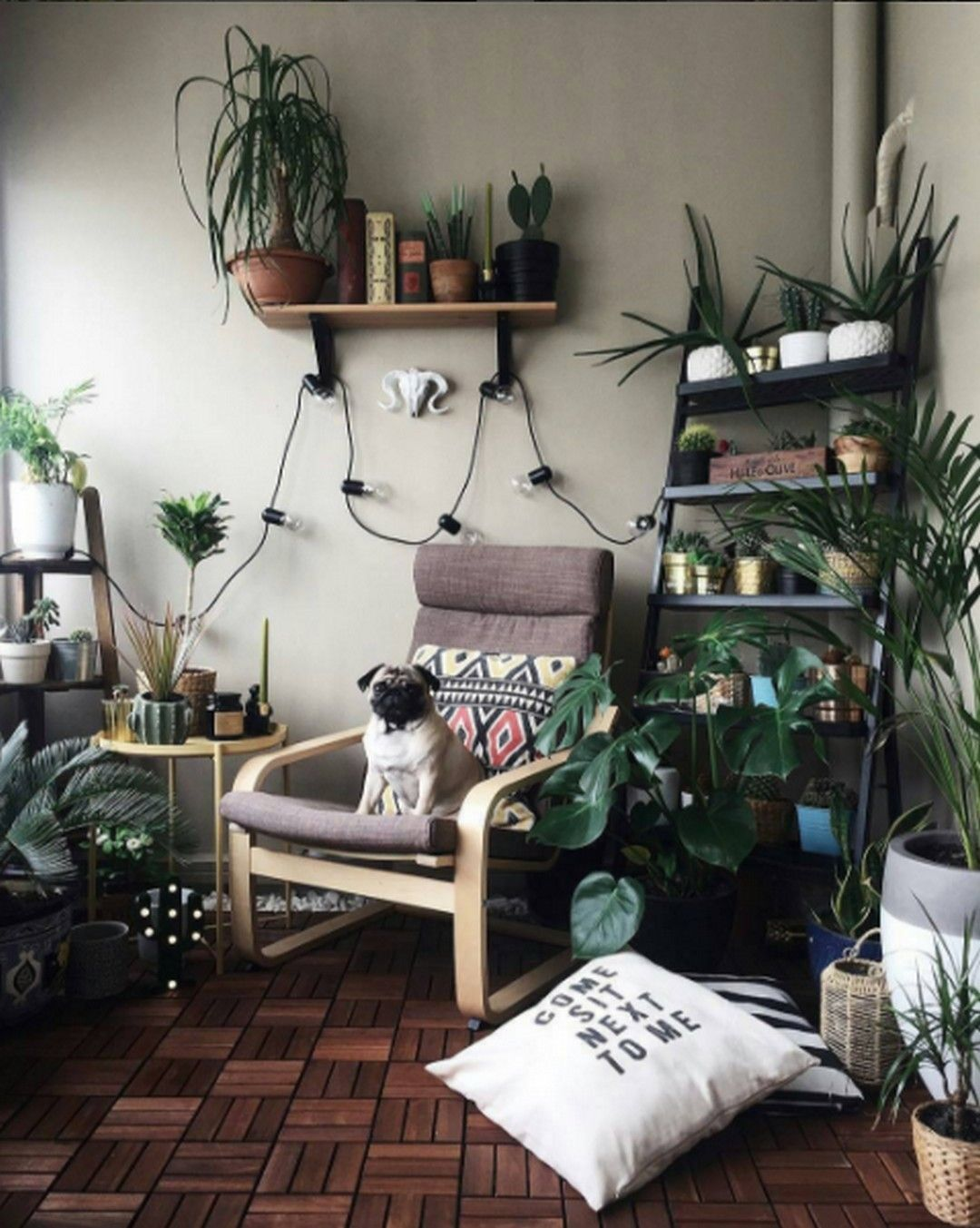 29 Best Diy Witchy Apartment Ideas To Get A Differing Look ...