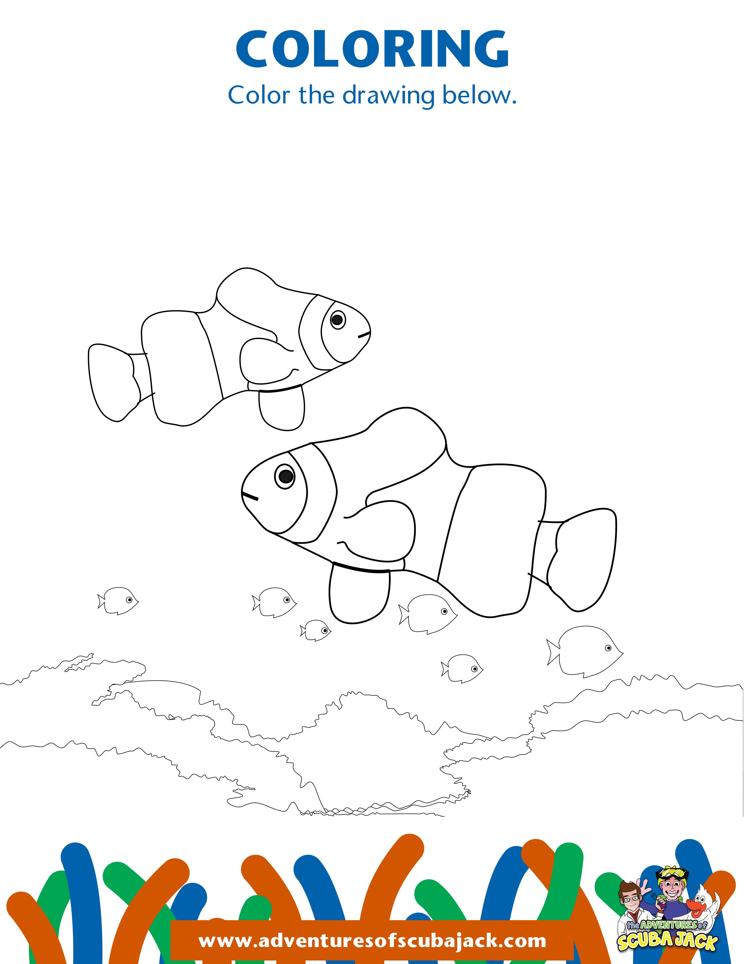 Clown Fish Activity 5 In