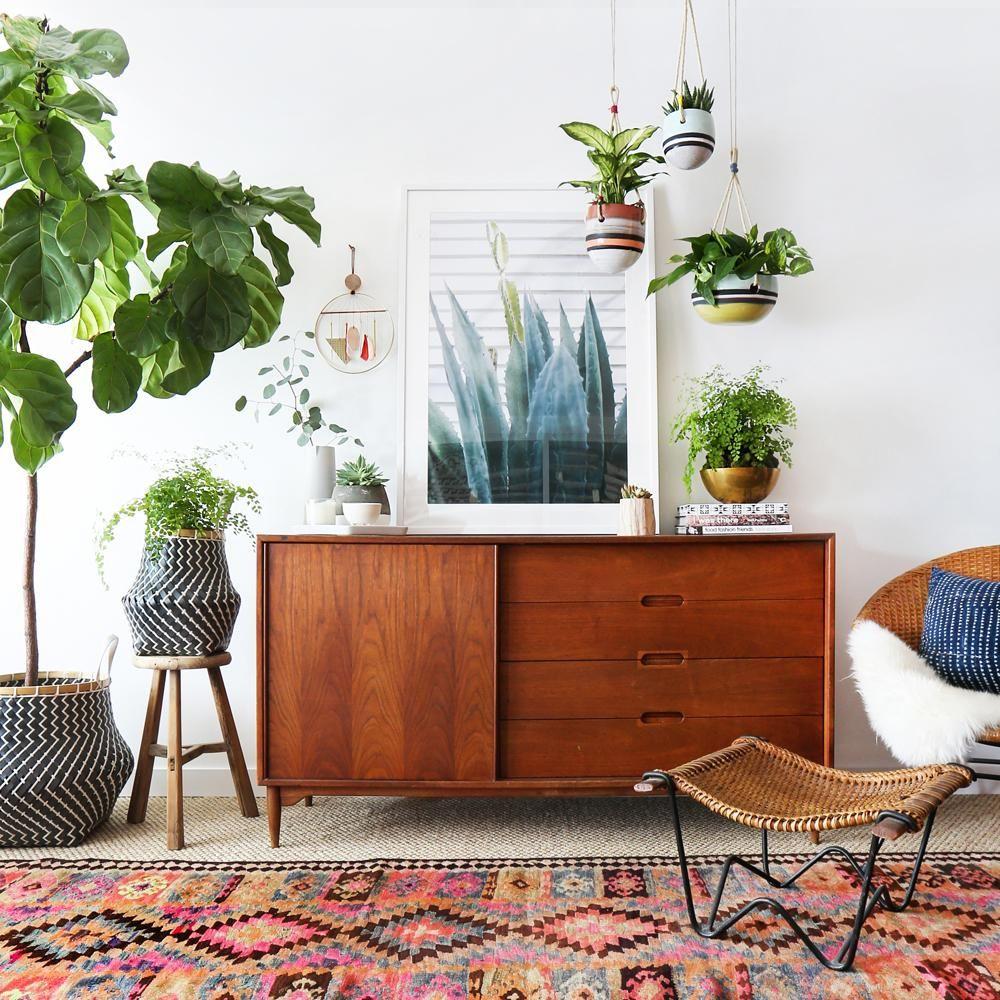 Plant life & prints