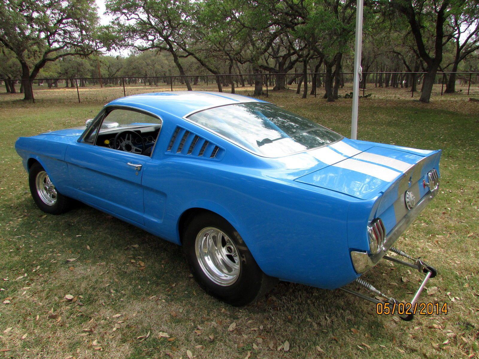 Mustang mustang mustang shelby ford mustang