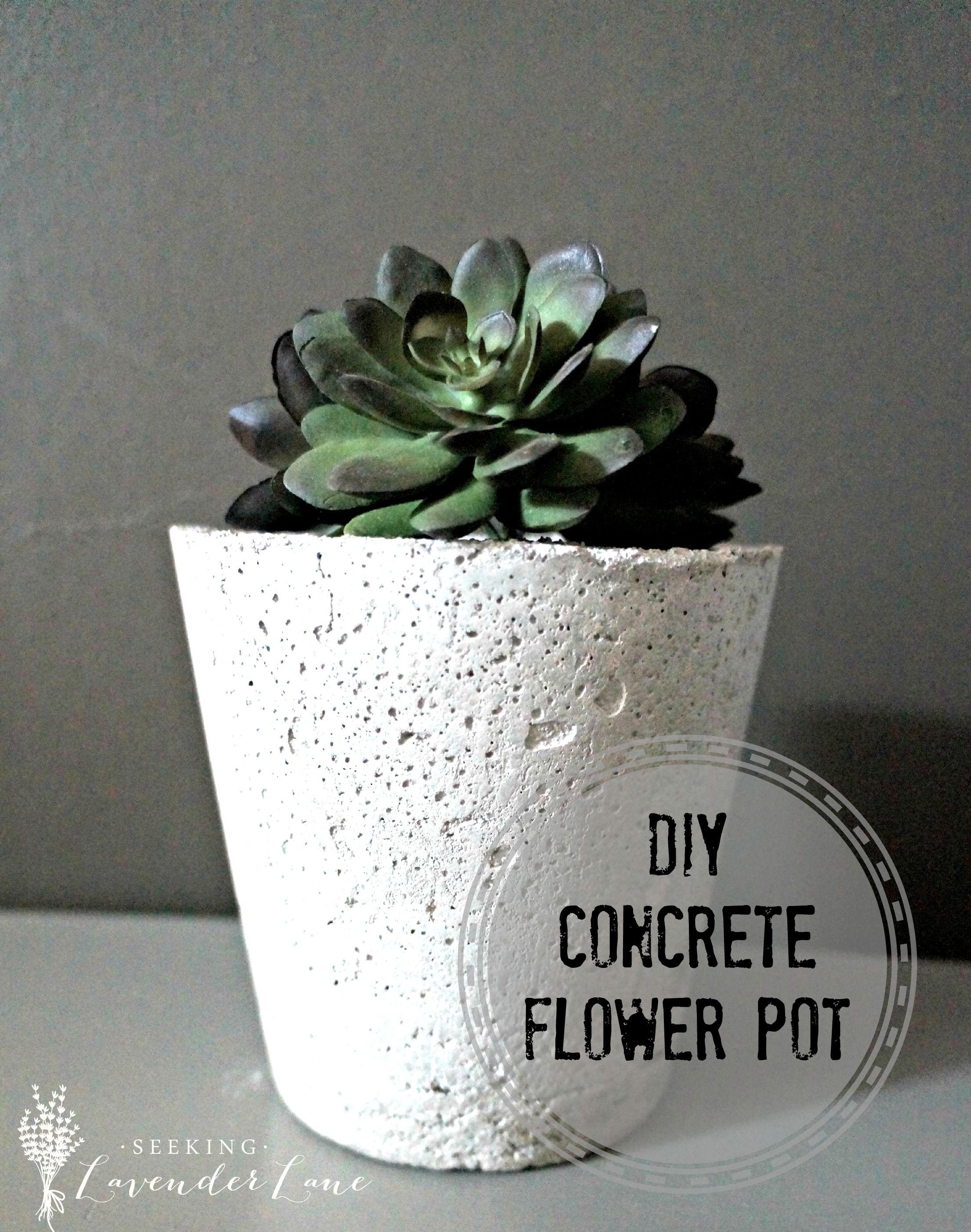 Home Depot Gift Challenge Concrete Planter   diy   Pinterest