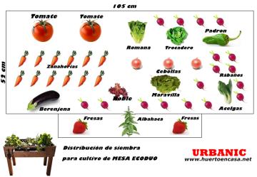 Asociación De Cultivos Para Huerto Urbano Ecológico En La