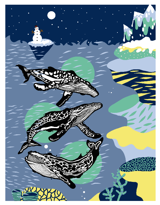 Whale Illustration by casiegraphics  #whale