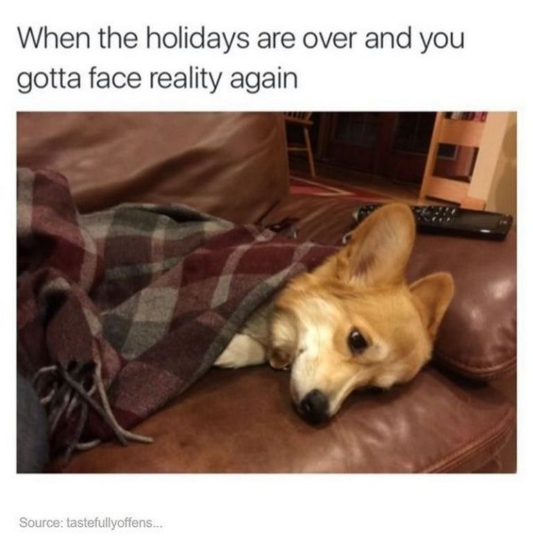 21 Funny Back To Work Memes Make That First Day Back Less Dreadful Work Memes Back To Work Humour Work Humor