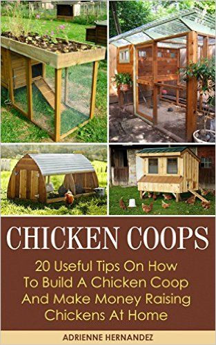 Superieur ... To Build A Chicken Coop And Make Money Raising Chickens At Home:  (Keeping Chickens, Raising Chickens For Dummies, . Guide To Raising  Backyard Chickens) ...